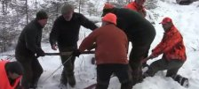 Охота на лося в Удмуртии